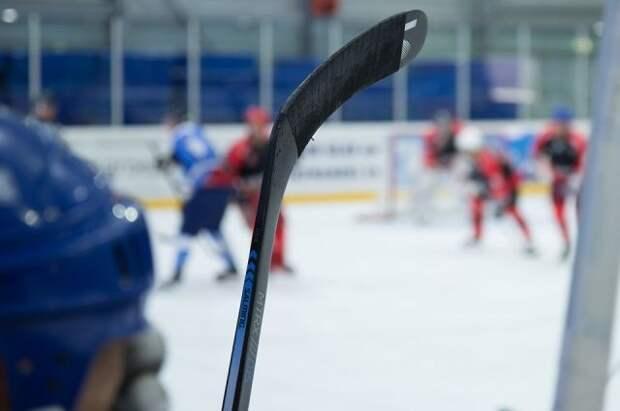Российского хоккеиста Бучневича дисквалифицировали за удар клюшкой в лицо