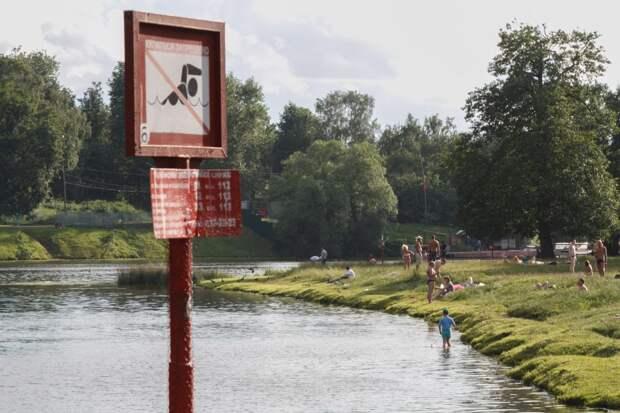Шибаевский пруд – одно из красивейших мест парка/Роман Балаев, архив газеты «Юго-Восточный курьер»
