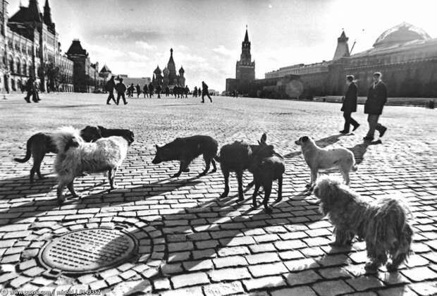 Прогулка по Москве 1993 года