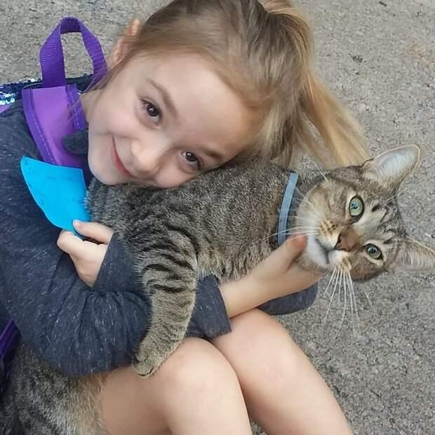 2. Друзья навсегда животные, животные и дети, кошки, питомцы, собаки, фото