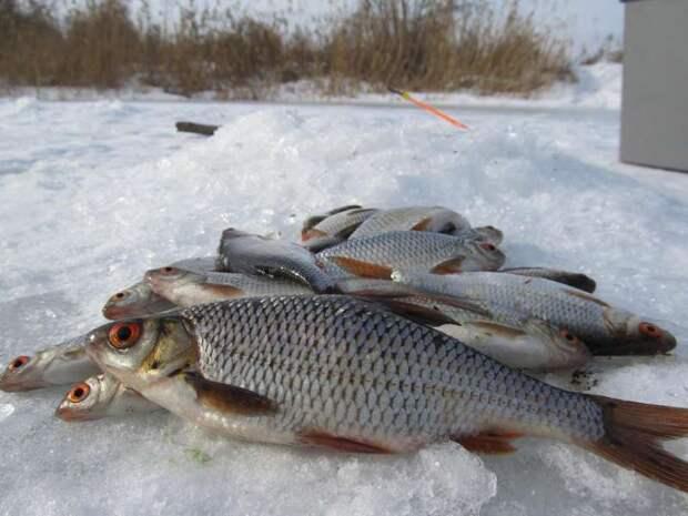 Перед армией я попросил у бога уловистой рыбалки