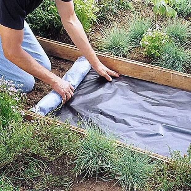 Как легко избавиться от травы на садовых дорожках