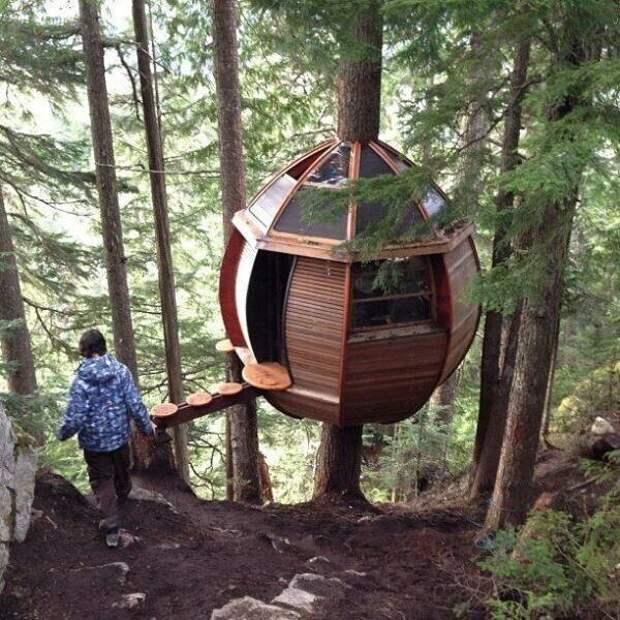 Деревянный дом для экстремалов