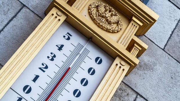 Россиянам пообещали теплое лето в 2021 году