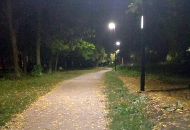 Уличное освещение в ЦПКиО Рязани полностью исправно — мэрия