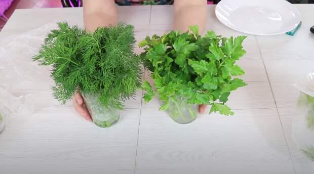Домохозяйка поделилась лайфхаком для сохранения свежести зелени