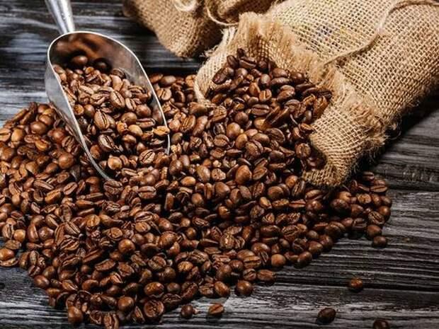 Ученые обещают полное исчезновение кофе на Земле: что придет на смену бодрящему напитку?