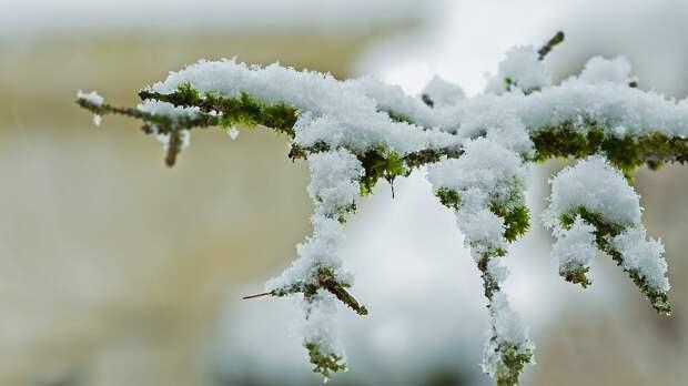 Первый снег выпадет в Удмуртии в выходные