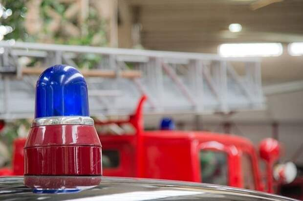 Две девочки погибли при пожаре в Подмосковье