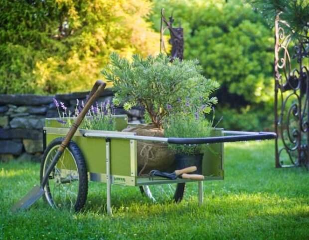 садовая тачка