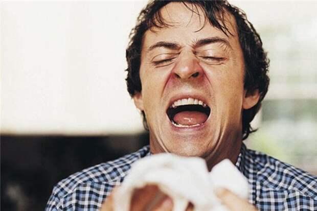 Приметы про чихание по дням недели