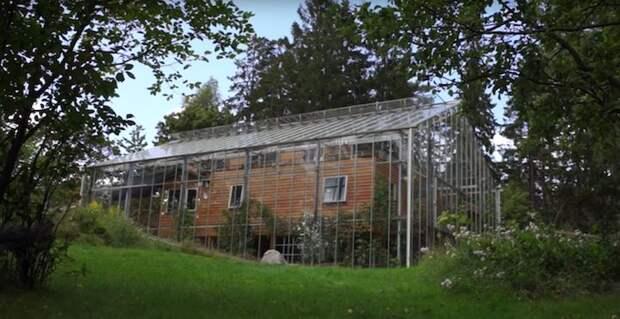 Чтобы обогреть свой дом, пара соорудила вокруг него огромную теплицу
