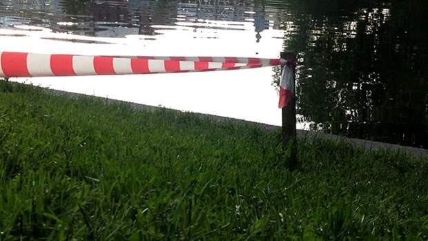 В Туле незаконно огородили заборами земли около городского парка