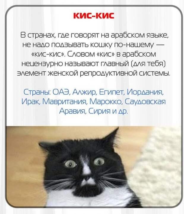 Слова на русском языке, похожие на ругательства в других странах слова, туризм