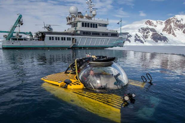 Погружение в подледную бездну у берегов Антарктиды: видео