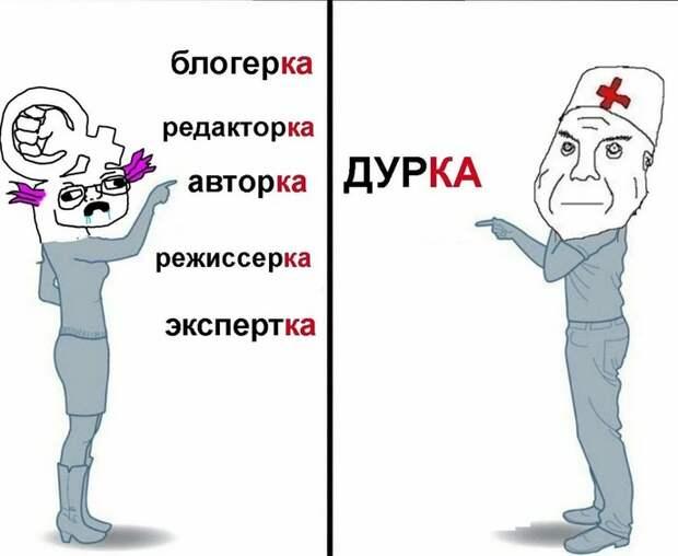 Учите русский язык! Почему феминитивы с суффиксом «-ка» – безграмотность