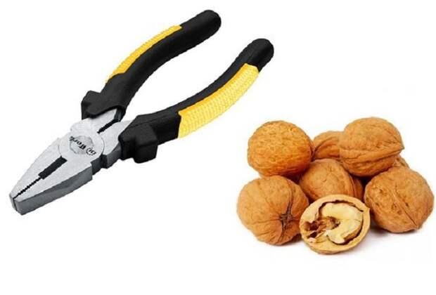 Освободить ядро ореха несложно с помощью плоскогубцев / Фото: dom-mpi.ru