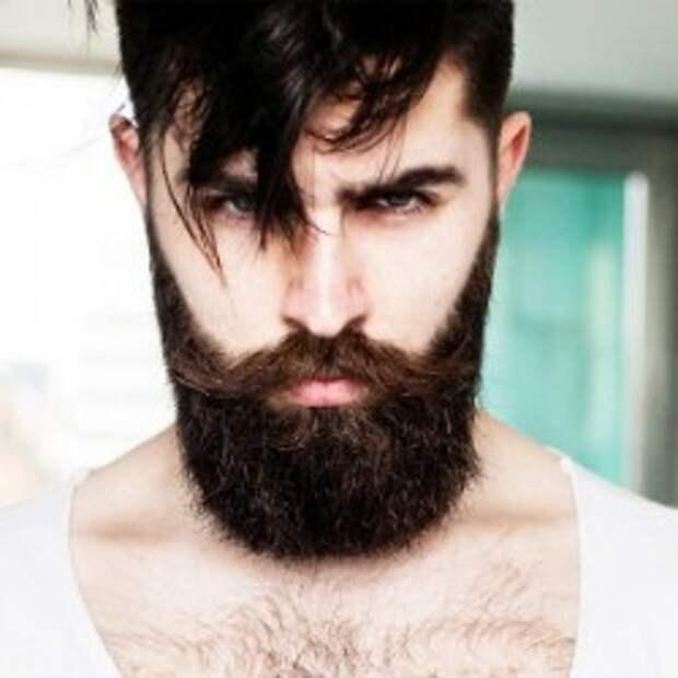 20 занимательных фактов о бороде