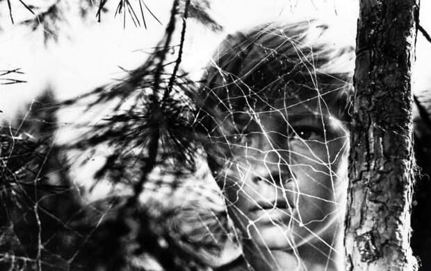 Сплав кошмара: невыносимый взгляд «Иди и смотри»