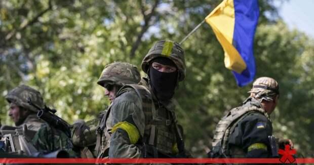 На Украине опубликовали секретные документы о преступлениях ВСУ в Донбассе