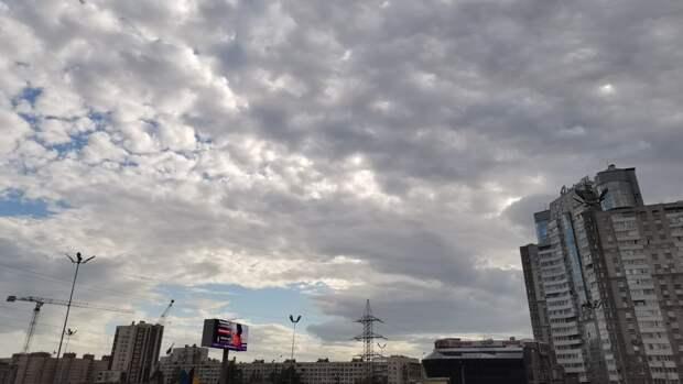 МЧС предупредило жителей Ленобласти о грозах в ближайшие часы