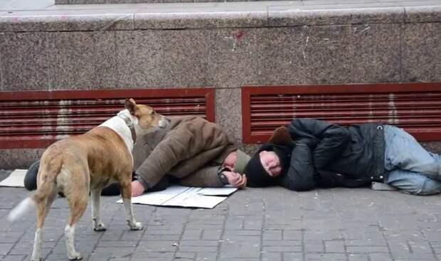 «Украинцы» устали и никому не нужны