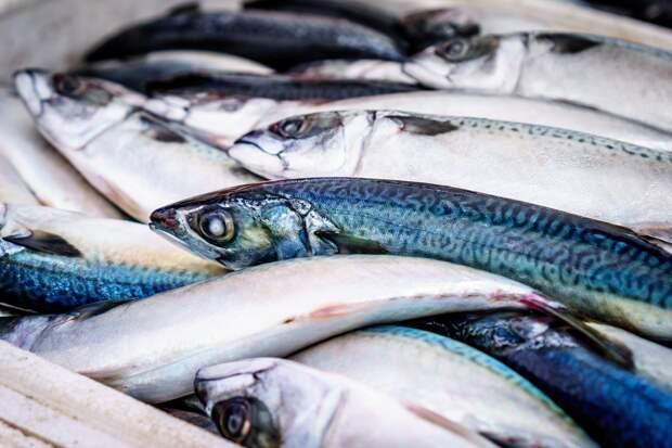 Жители Увинского района пожаловались на гибель рыбы в реке Ува