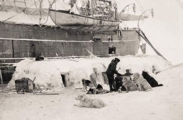 Фритьоф Нансен основал новую науку, спас тысячи русских и вернул независимость Норвегии