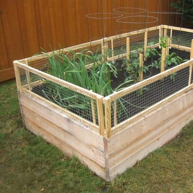 Компактная грядка с ярким ограждением идеально подойдёт для выращивания цветов и растений, а также станет настоящим украшением садового участка.