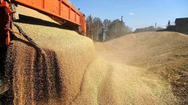 Минсельхоз США улучшил прогноз по урожаю пшеницы в РФ до почти 86 миллионов тонн в 2021 году