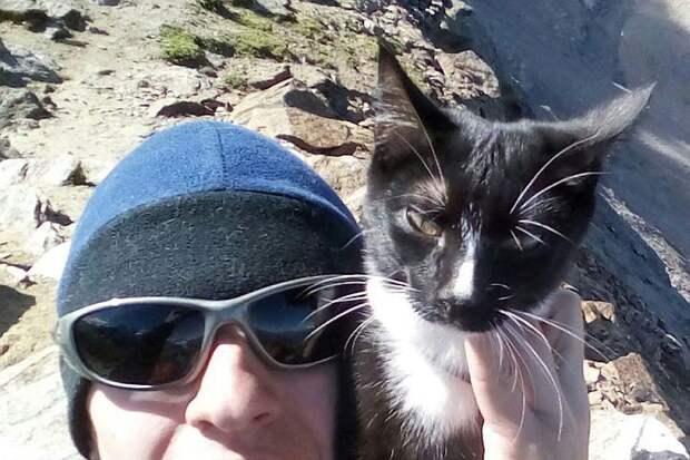 Граф - самый известный кот-путешественник в России. Фото: СОЦСЕТИ