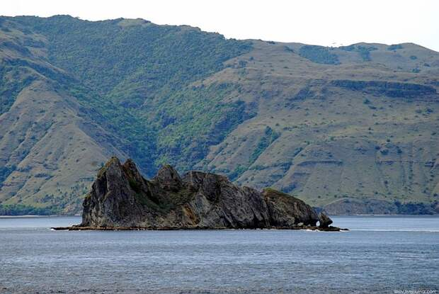 Путешествие на остров Комодо