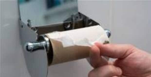 Немецкая журналистка предложила отказаться от туалетной бумаги