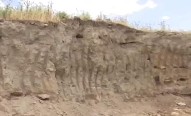 В Дагестане снесли поселение возрастом 5000 лет и разровняли под теплицы