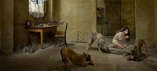 Девочка в стае собак