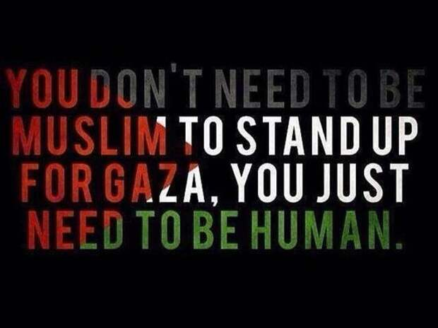 «Мусульман не победить»: Хабиб и многие другие поддержали палестинцев