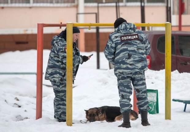 В Челябинске спасли служебную собаку, отравившуюся наркотиками во время обыска притона наркомания, полиция, собака, спасение, челябинск