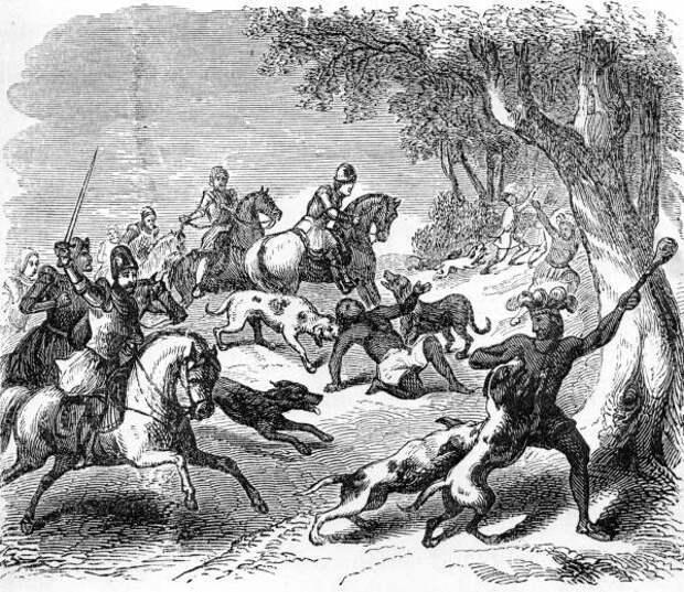 Боевые собаки - оружие конкистадоров