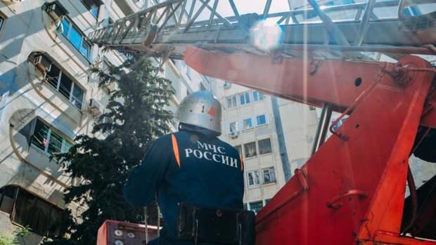 Сотрудники МЧС спасли маленькую черепашку на пожаре в Севастополе