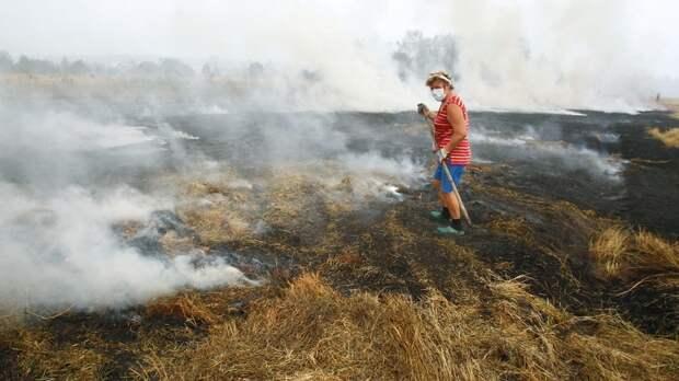 Убирайтесь в свою Америку: На Кубани разгромили лагерь «Гринпис»
