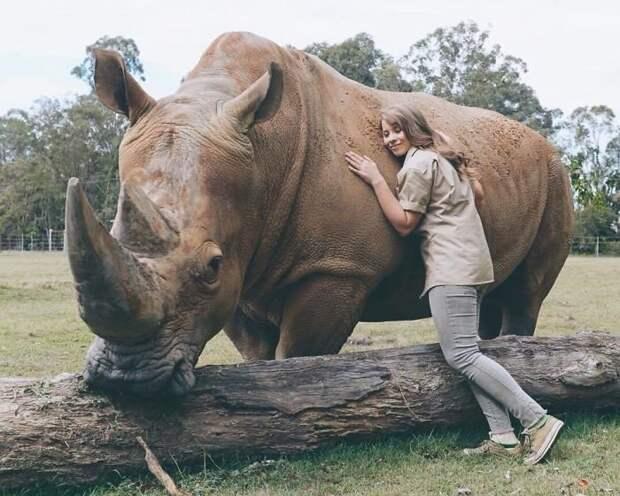 Дочь легендарного Стива Ирвина продолжает идти по стопам отца Бинди Ирвин, дикие животные, животные, зоопарк, истории, натуралист, охотник на крокодилов, стив ирвин