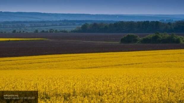 Новый меморандум с МВФ: Украина сдает Западу свои национальные интересы