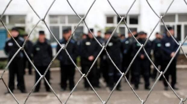 Осужденные колонии №11 Удмуртии обеспечили огурцами собратьев по неволе