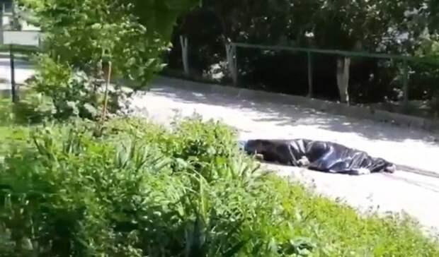 Труп выпавшего изокна мужчины два часа лежит рядом сдетской площадкой вРостове
