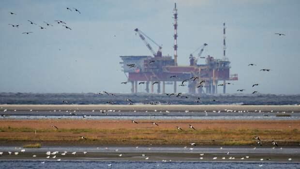 Угроза дефицита нефти нависла над миром