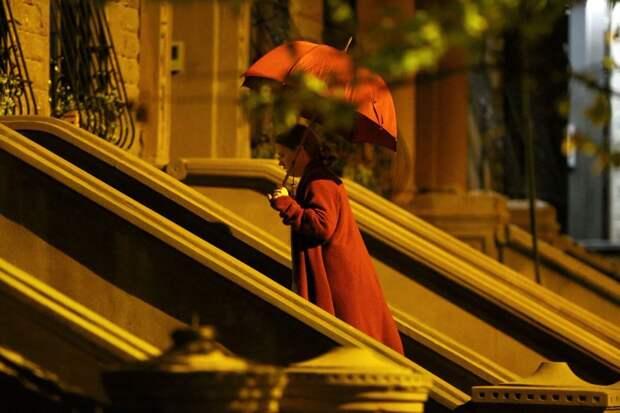 Одинокая Эми Адамс пытается доказать, что видела преступление