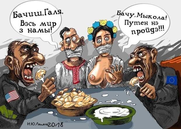 Новости из США прогремели в хлеву Васильевки....