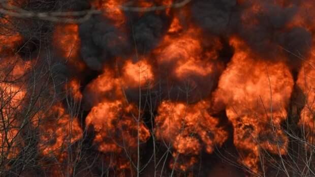 Пожарные спасли от огня село в Зауралье
