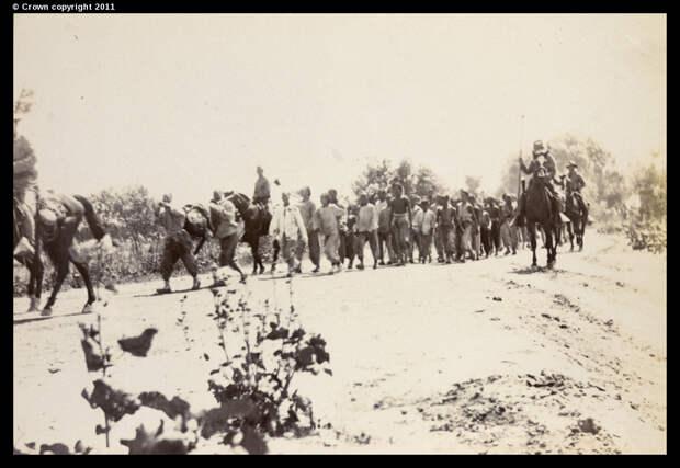 Американские кавалеристы сопровождают захваченных мятежников