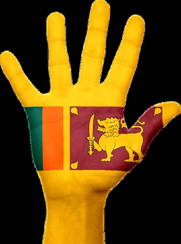 Шри Ланка, Флаг, Рука, Национальных, Пальцы